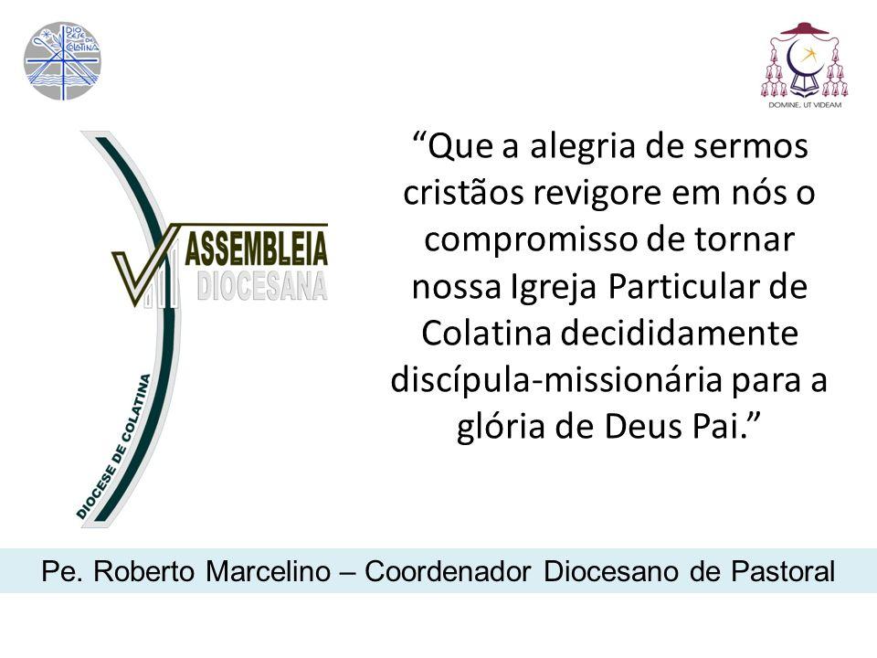 Pe. Roberto Marcelino – Coordenador Diocesano de Pastoral