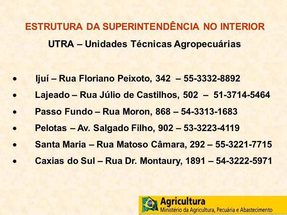 ESTRUTURA DA SUPERINTENDÊNCIA NO INTERIOR