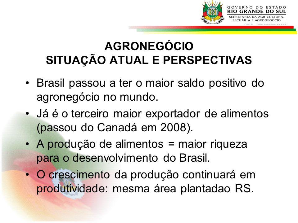 AGRONEGÓCIO SITUAÇÃO ATUAL E PERSPECTIVAS