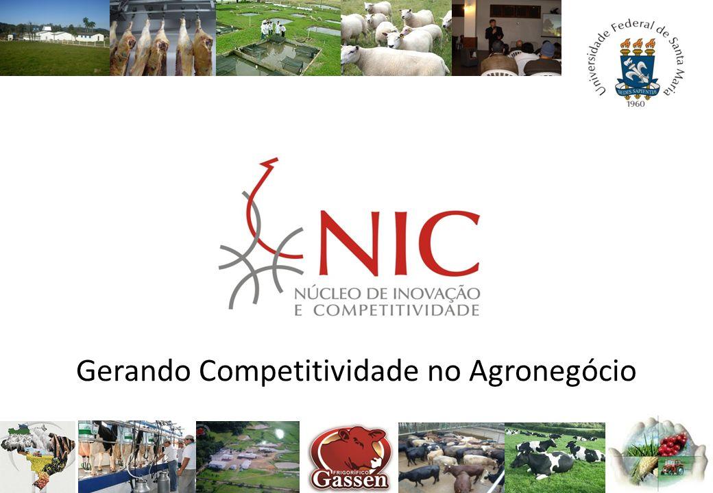 Gerando Competitividade no Agronegócio