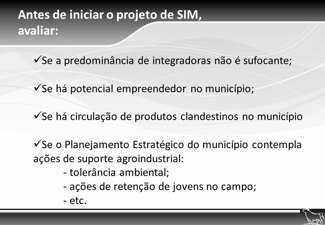 Antes de iniciar o projeto de SIM, avaliar:
