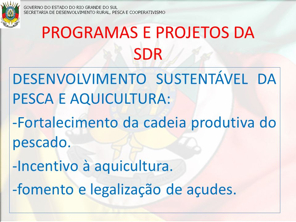PROGRAMAS E PROJETOS DA SDR
