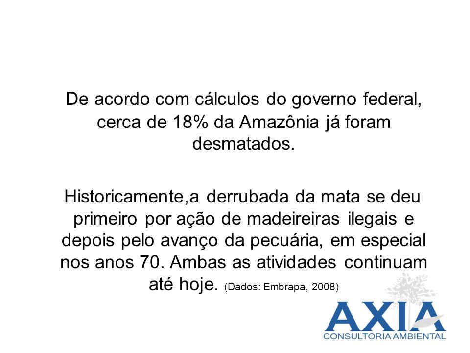 De acordo com cálculos do governo federal, cerca de 18% da Amazônia já foram desmatados.