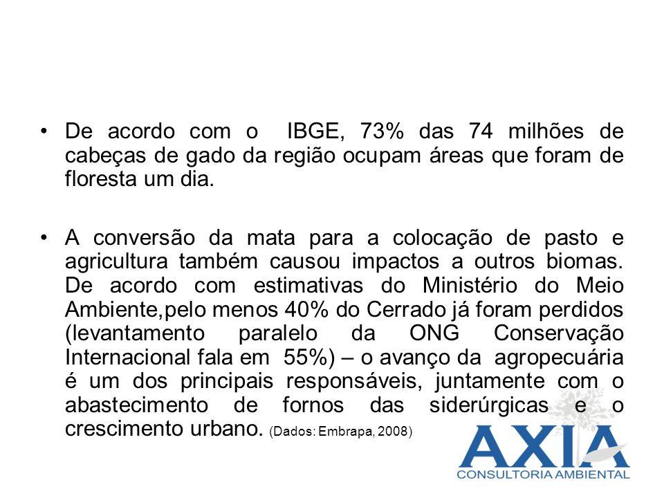 De acordo com o IBGE, 73% das 74 milhões de cabeças de gado da região ocupam áreas que foram de floresta um dia.