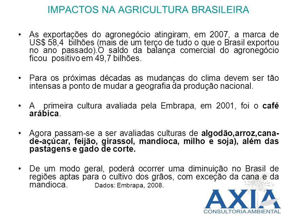 IMPACTOS NA AGRICULTURA BRASILEIRA