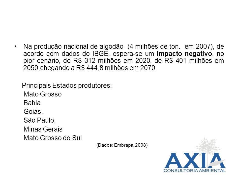 Principais Estados produtores: Mato Grosso Bahia Goiás, São Paulo,