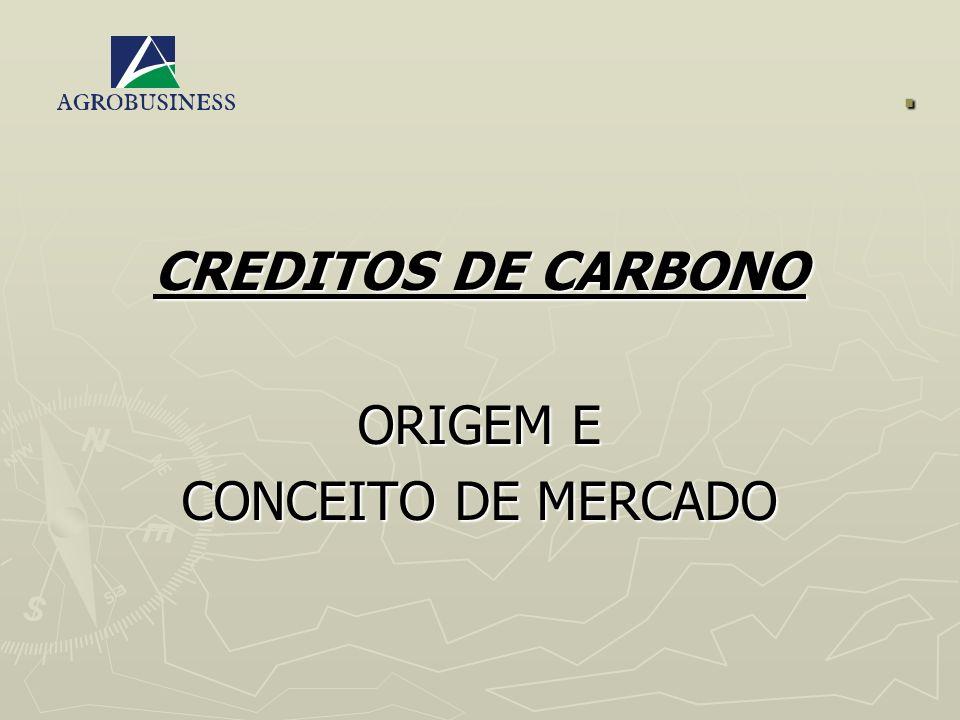 . CREDITOS DE CARBONO ORIGEM E CONCEITO DE MERCADO