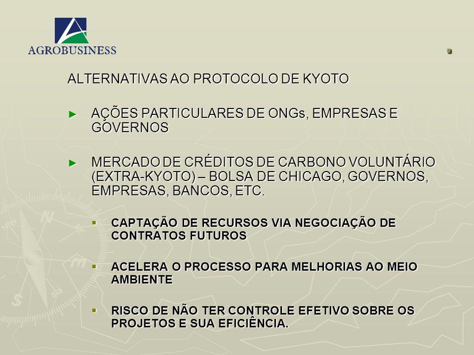 . ALTERNATIVAS AO PROTOCOLO DE KYOTO