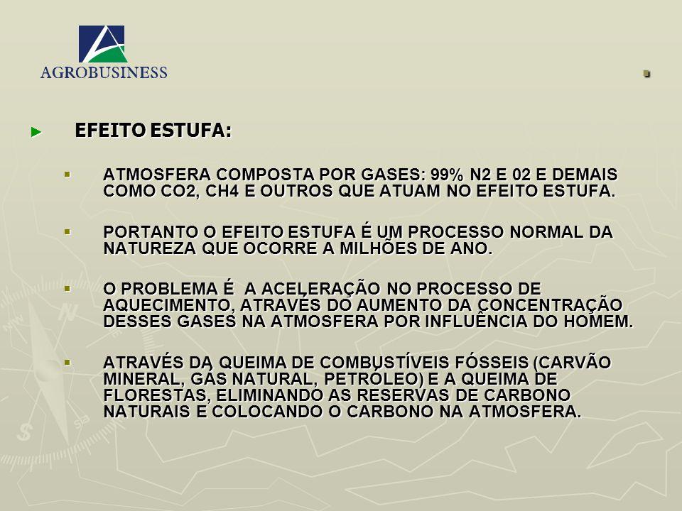 . EFEITO ESTUFA: ATMOSFERA COMPOSTA POR GASES: 99% N2 E 02 E DEMAIS COMO CO2, CH4 E OUTROS QUE ATUAM NO EFEITO ESTUFA.