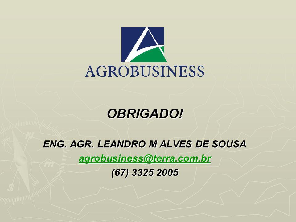 ENG. AGR. LEANDRO M ALVES DE SOUSA