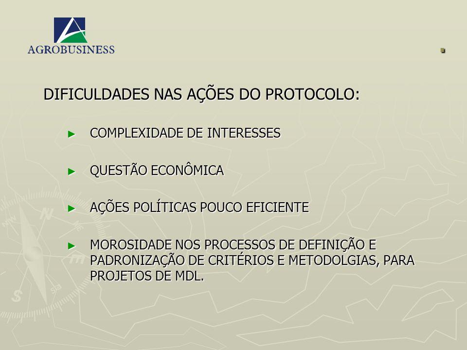 . DIFICULDADES NAS AÇÕES DO PROTOCOLO: COMPLEXIDADE DE INTERESSES