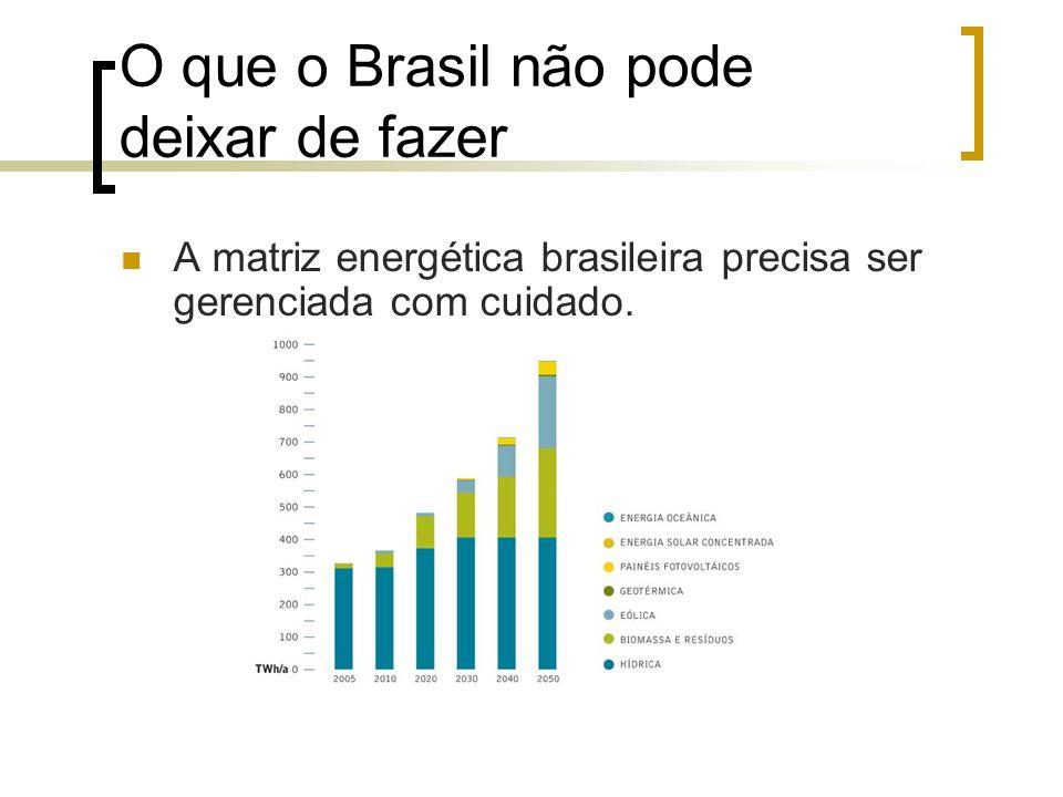 O que o Brasil não pode deixar de fazer