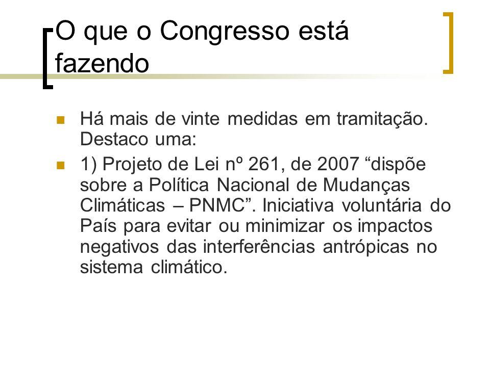 O que o Congresso está fazendo