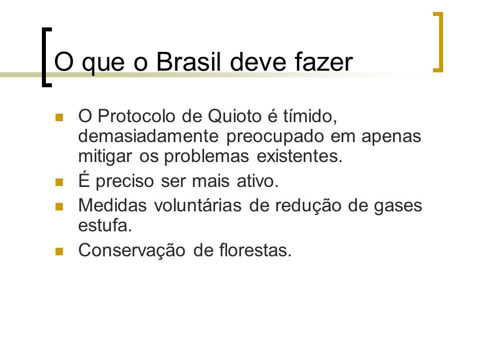 O que o Brasil deve fazer