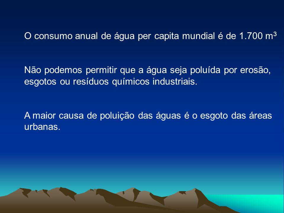 O consumo anual de água per capita mundial é de 1.700 m3