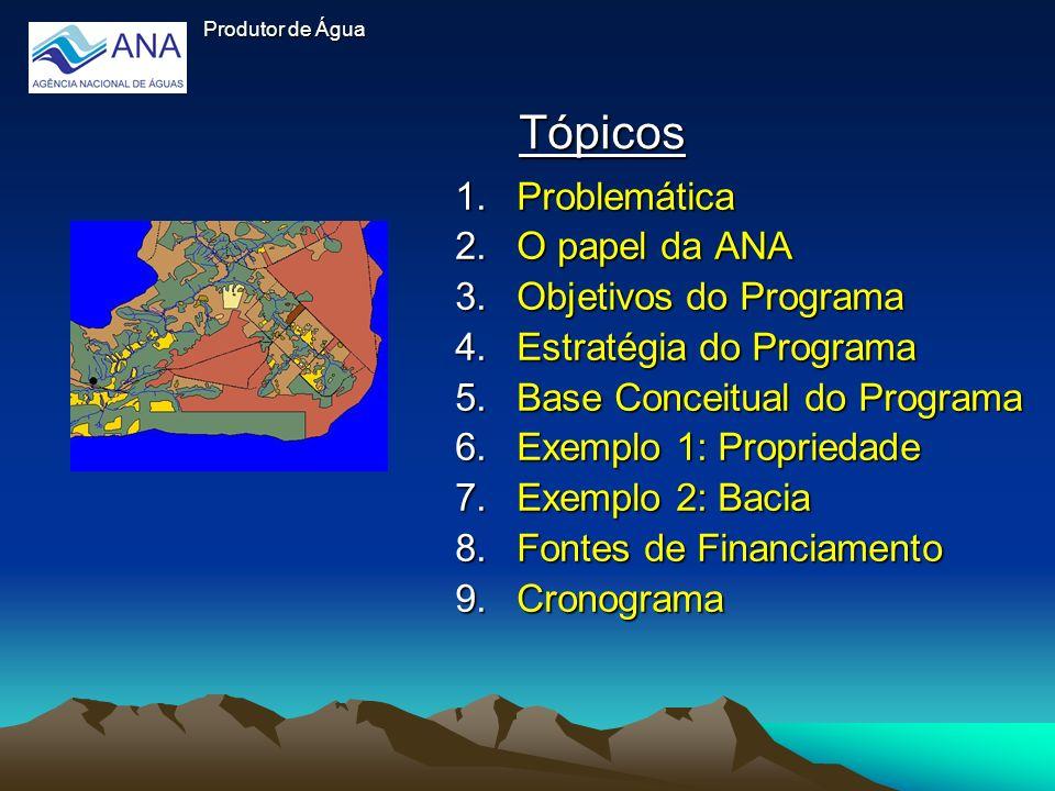 Tópicos Problemática O papel da ANA Objetivos do Programa