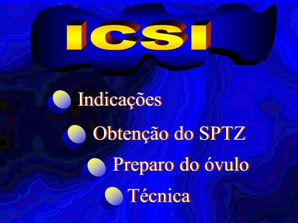 ICSI Indicações Obtenção do SPTZ Preparo do óvulo Técnica