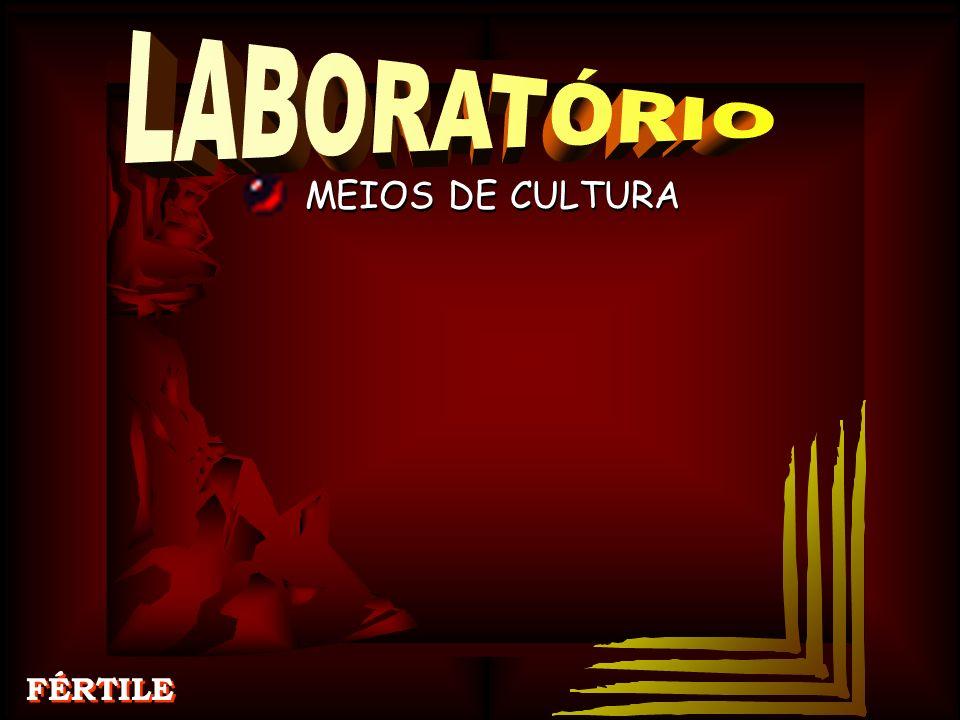 LABORATÓRIO MEIOS DE CULTURA FÉRTILE MEIOS DE CULTURA