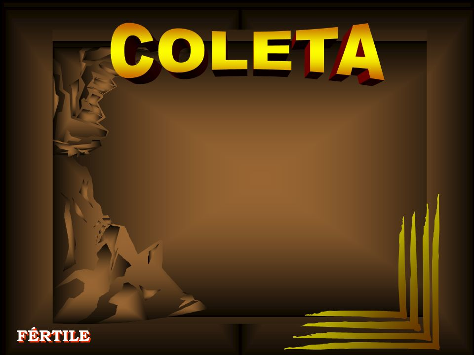 COLETA FÉRTILE