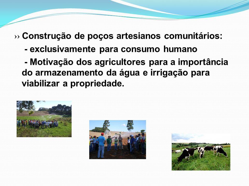 ›› Construção de poços artesianos comunitários: - exclusivamente para consumo humano - Motivação dos agricultores para a importância do armazenamento da água e irrigação para viabilizar a propriedade.
