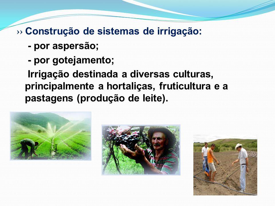 ›› Construção de sistemas de irrigação: - por aspersão; - por gotejamento; Irrigação destinada a diversas culturas, principalmente a hortaliças, fruticultura e a pastagens (produção de leite).