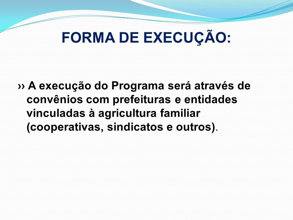 FORMA DE EXECUÇÃO: