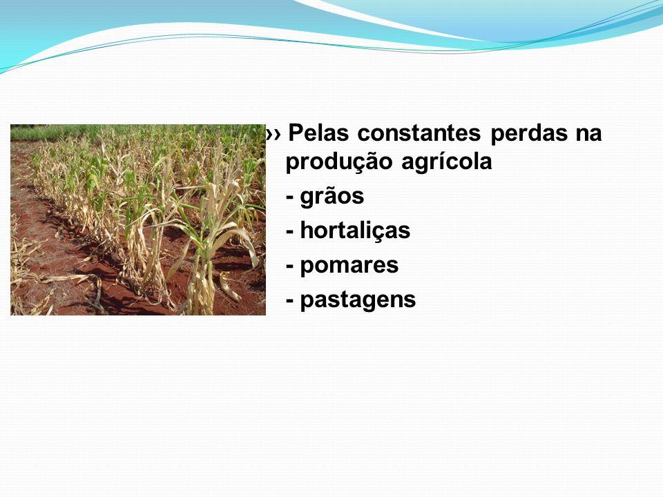›› Pelas constantes perdas na produção agrícola - grãos - hortaliças - pomares - pastagens