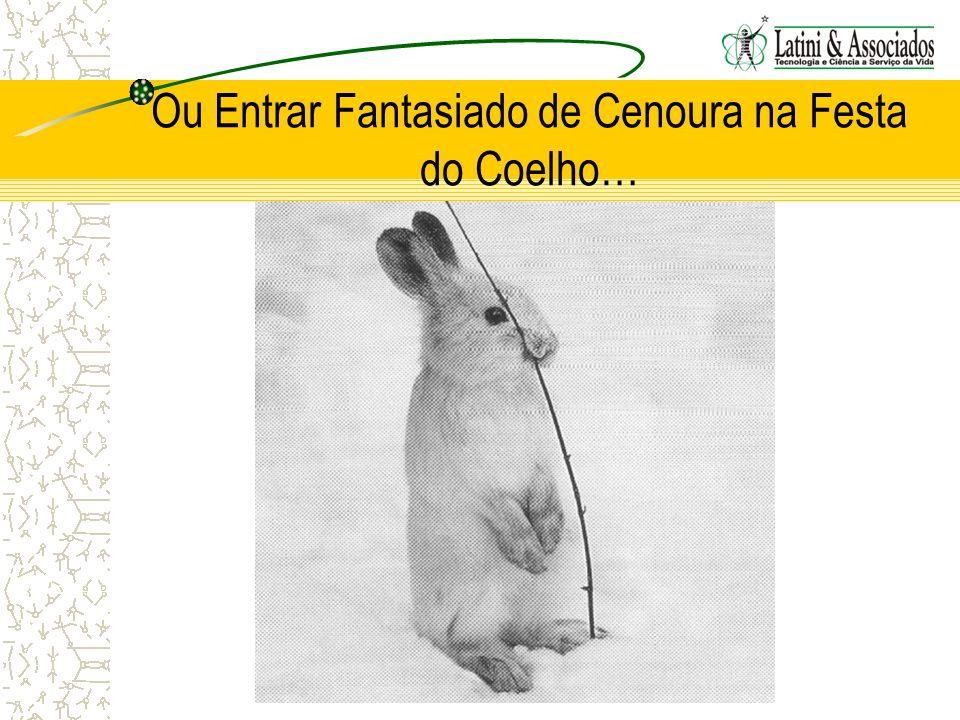 Ou Entrar Fantasiado de Cenoura na Festa do Coelho…