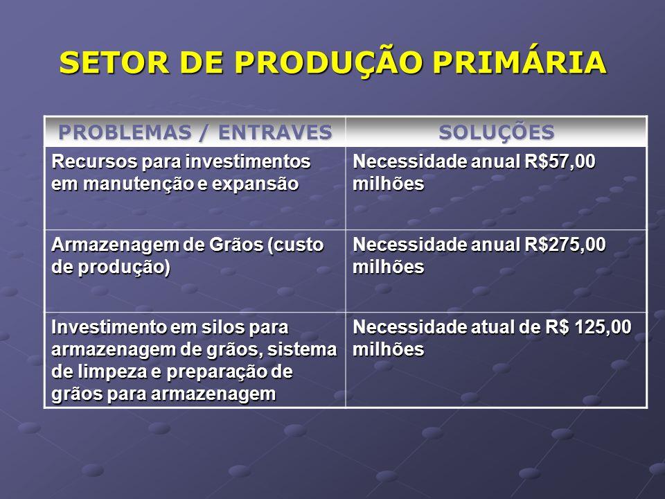 SETOR DE PRODUÇÃO PRIMÁRIA