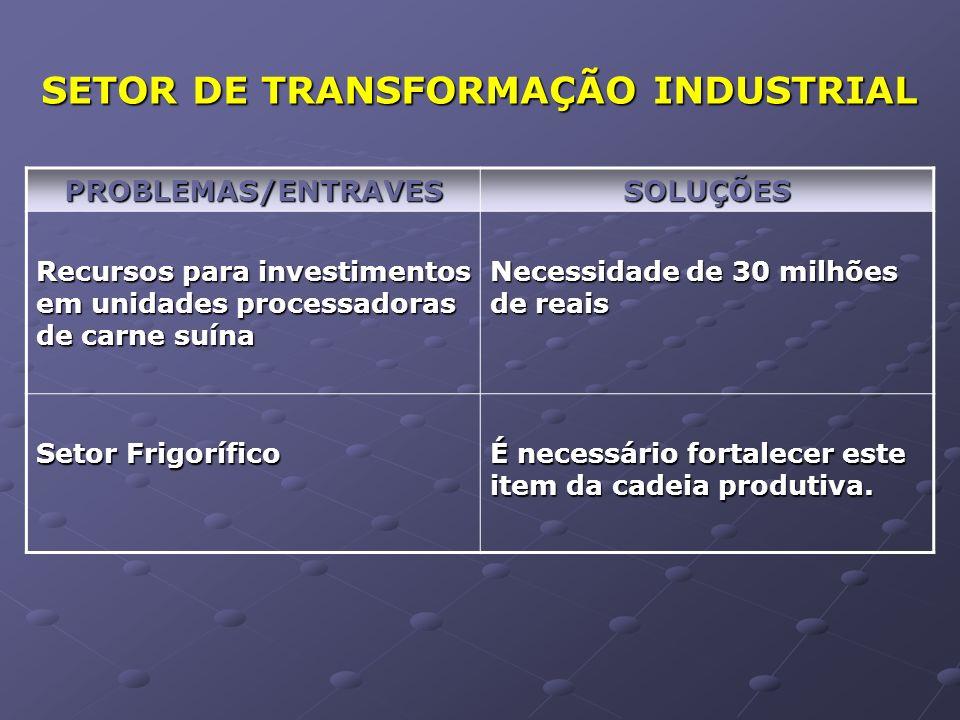 SETOR DE TRANSFORMAÇÃO INDUSTRIAL