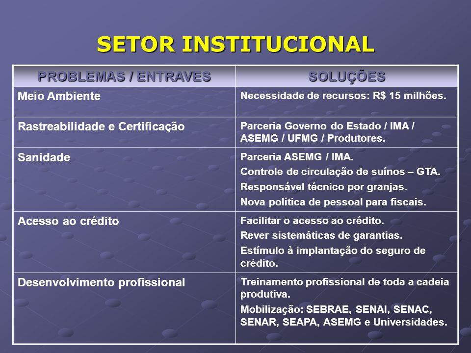SETOR INSTITUCIONAL PROBLEMAS / ENTRAVES SOLUÇÕES Meio Ambiente