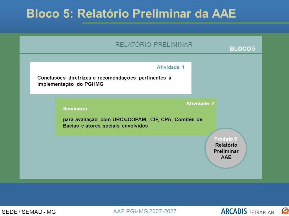 Relatório Preliminar AAE