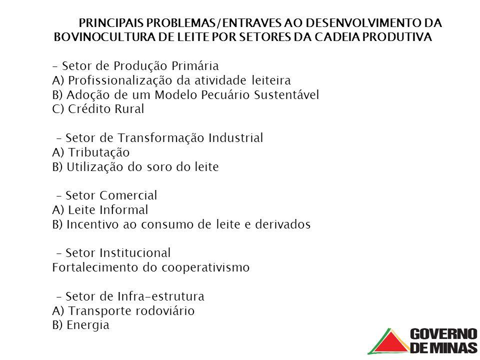 PRINCIPAIS PROBLEMAS/ENTRAVES AO DESENVOLVIMENTO DA BOVINOCULTURA DE LEITE POR SETORES DA CADEIA PRODUTIVA