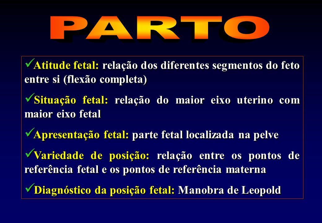 PARTO Atitude fetal: relação dos diferentes segmentos do feto entre si (flexão completa)