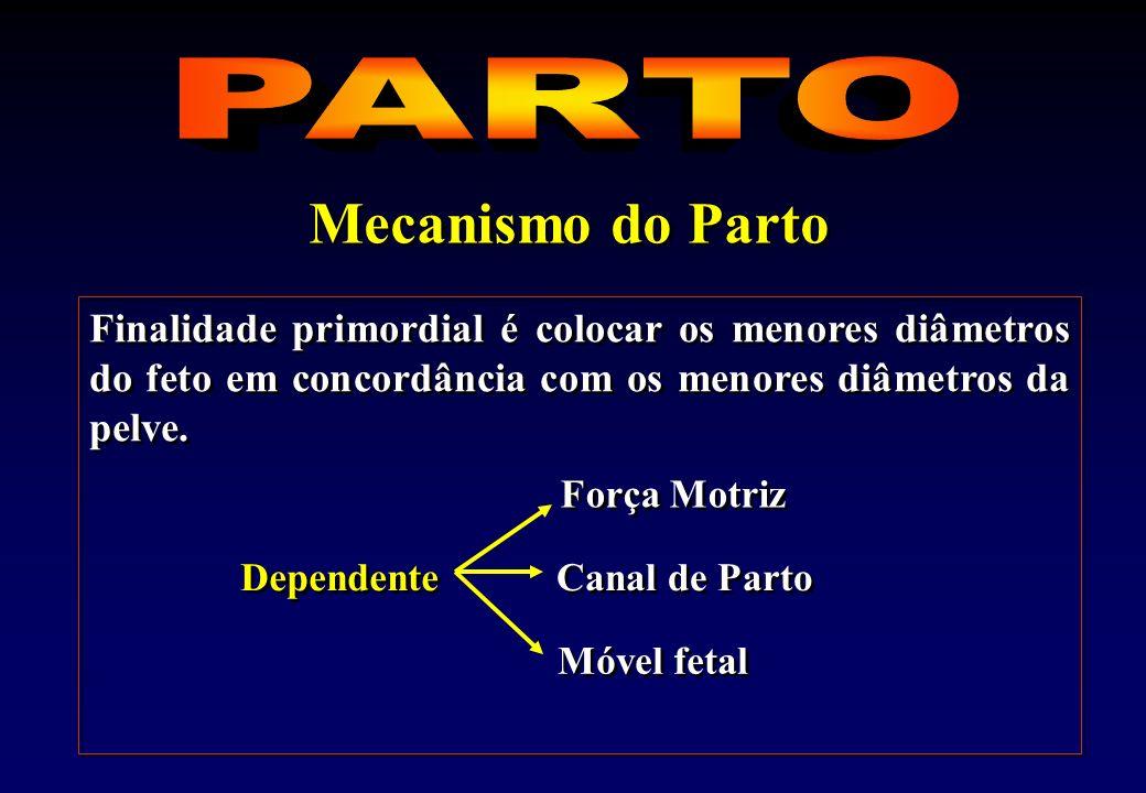 Mecanismo do Parto PARTO