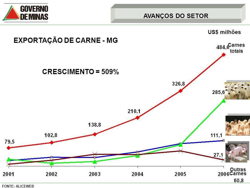 EXPORTAÇÃO DE CARNE - MG