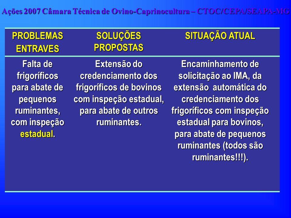 Ações 2007 Câmara Técnica de Ovino-Caprinocultura – CTOC/CEPA/SEAPA-MG