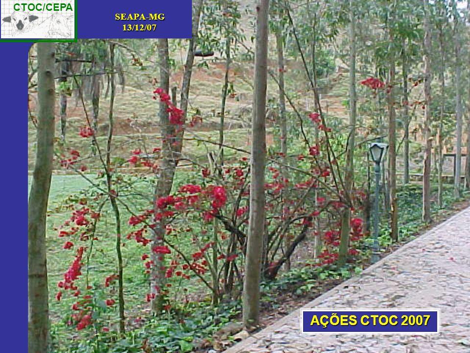 AÇÕES CTOC 2007