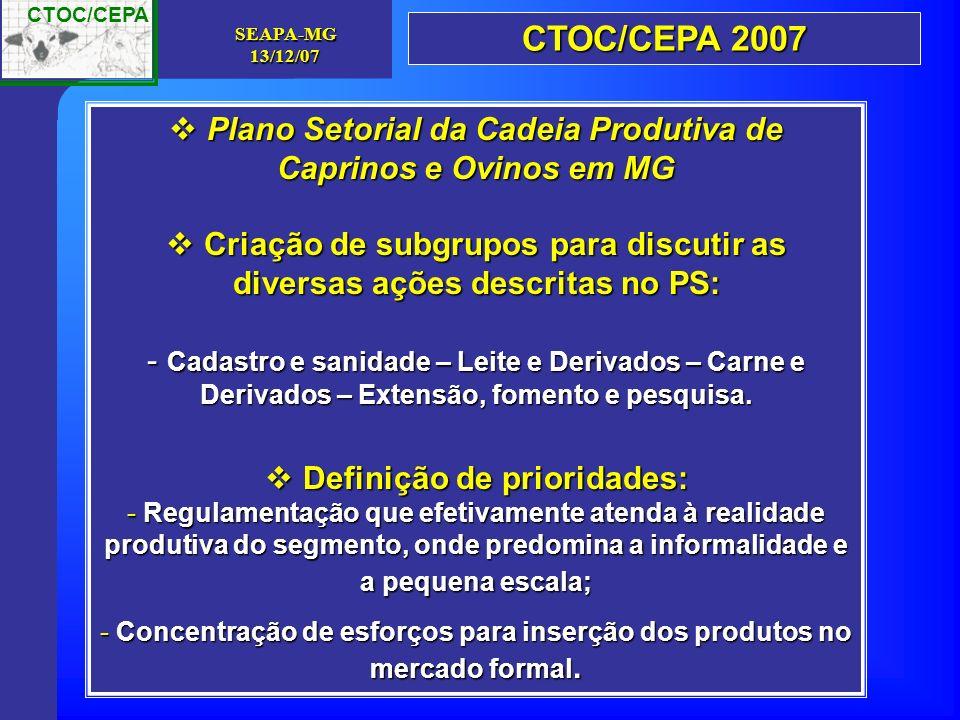 CTOC/CEPA 2007 Plano Setorial da Cadeia Produtiva de Caprinos e Ovinos em MG. Criação de subgrupos para discutir as diversas ações descritas no PS: