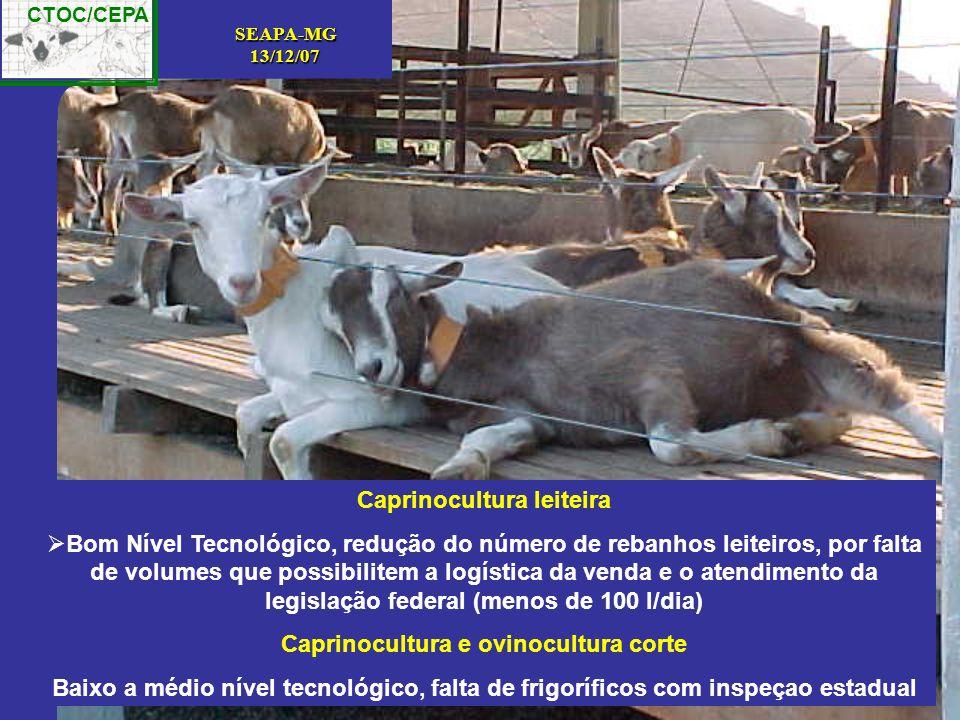 Caprinocultura leiteira Caprinocultura e ovinocultura corte