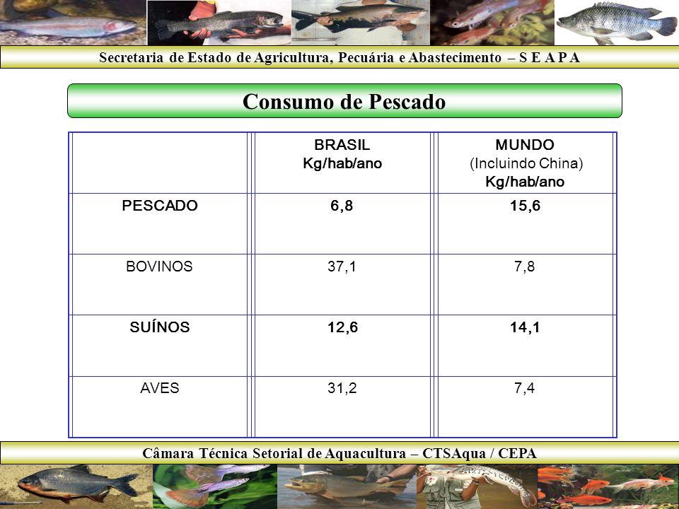 Câmara Técnica Setorial de Aquacultura – CTSAqua / CEPA
