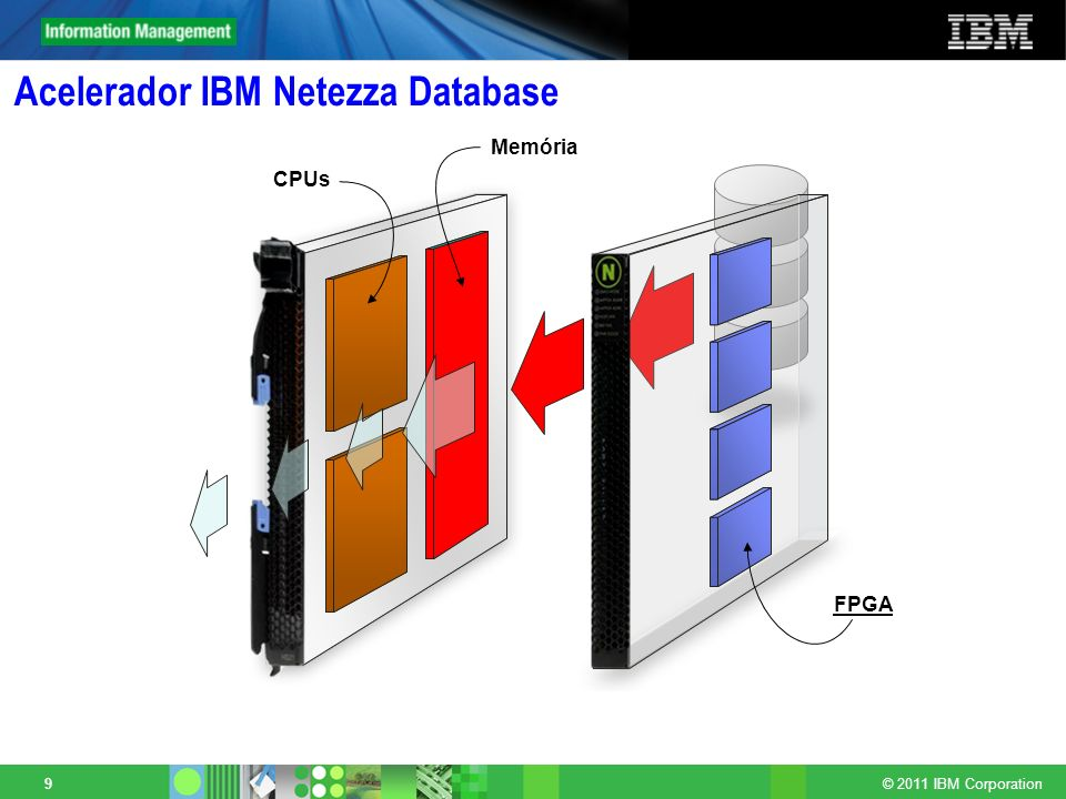 Acelerador IBM Netezza Database