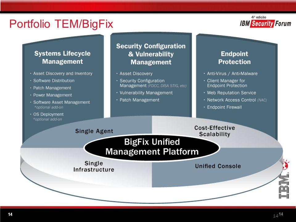 TEM: Como funciona Infraestrutura Robusta e Leve