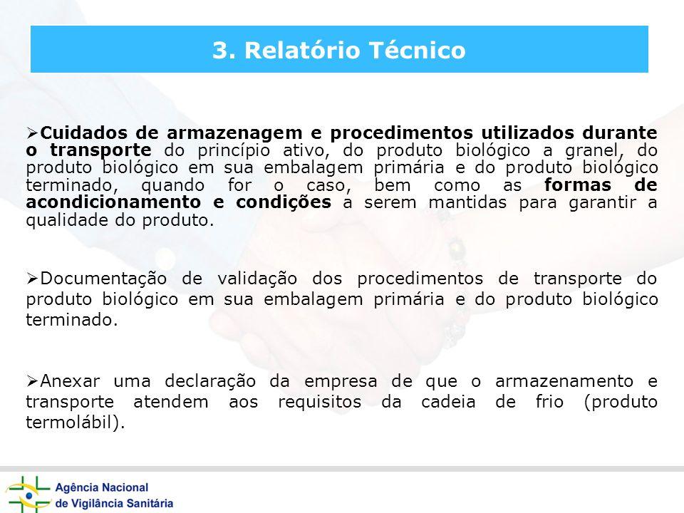 3. Relatório Técnico