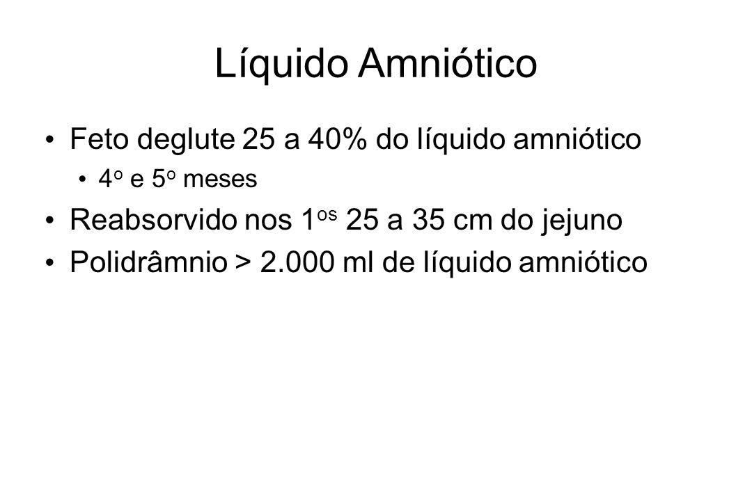 Líquido Amniótico Feto deglute 25 a 40% do líquido amniótico