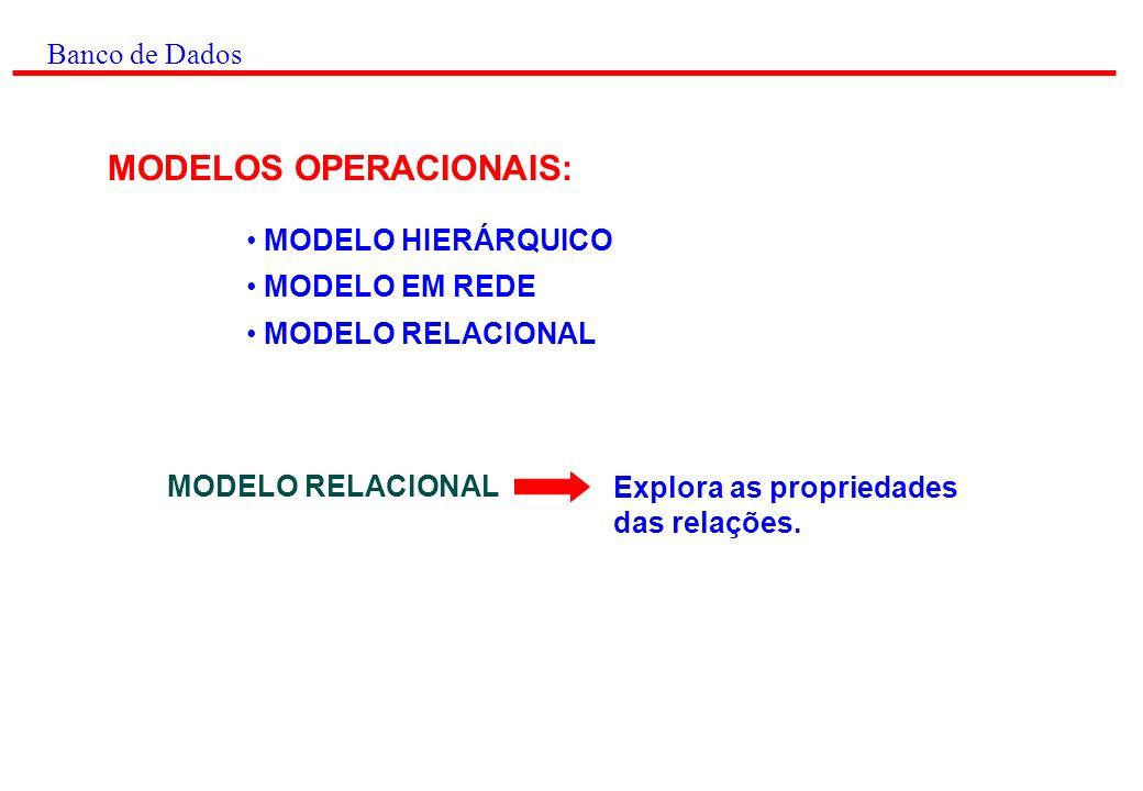 MODELOS OPERACIONAIS: