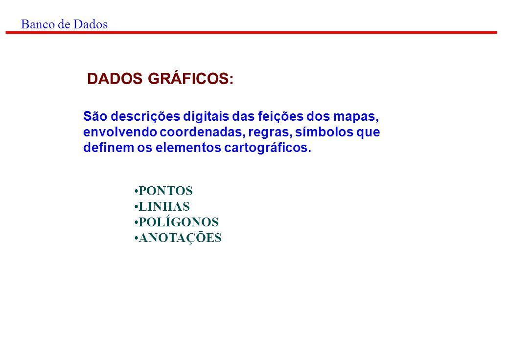 DADOS GRÁFICOS: Banco de Dados