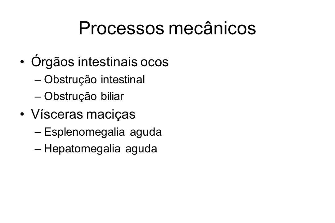 Processos mecânicos Órgãos intestinais ocos Vísceras maciças