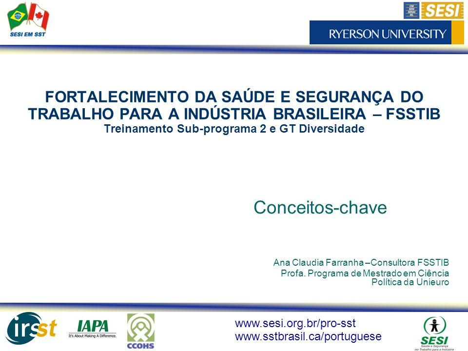 FORTALECIMENTO DA SAÚDE E SEGURANÇA DO TRABALHO PARA A INDÚSTRIA BRASILEIRA – FSSTIB Treinamento Sub-programa 2 e GT Diversidade