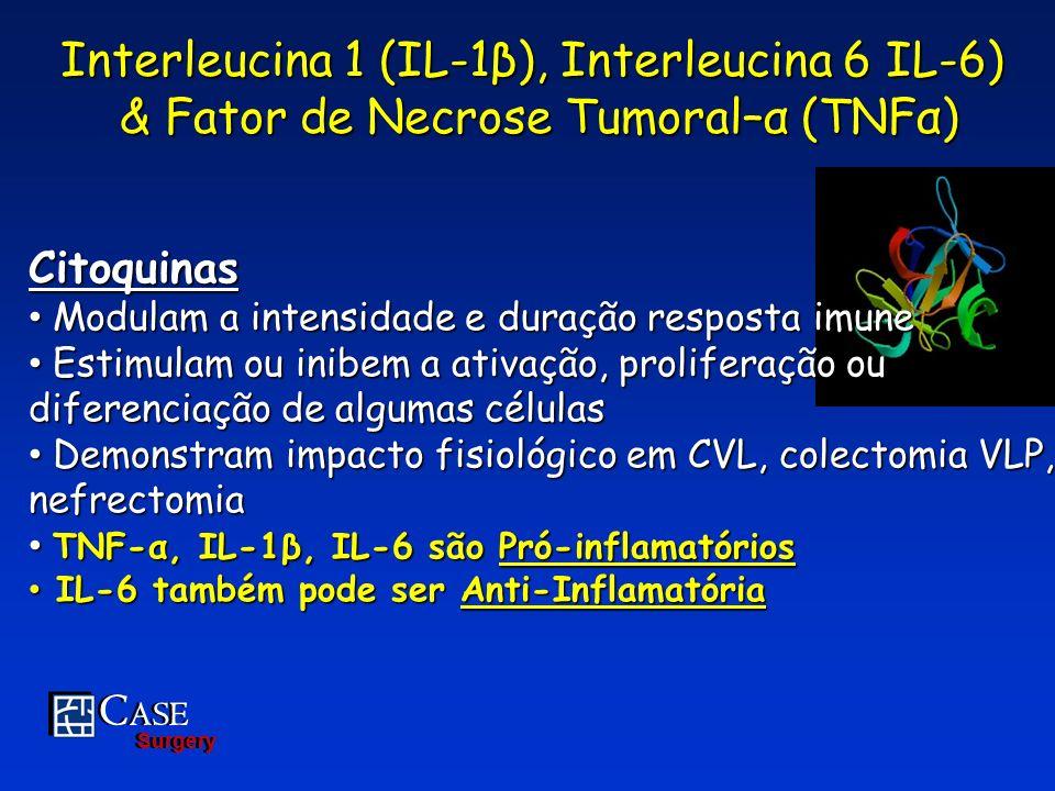 Interleucina 1 (IL-1β), Interleucina 6 IL-6)